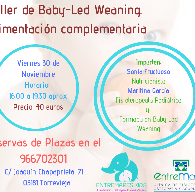 TALLER ALIMENTACION COMPLEMENTARIA. Baby Led Weaning